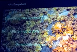 APIs_Everwhere